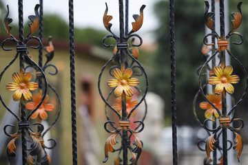 Forge detail. Part of a wrought iron fence with yellow flowers, design iron gate details.