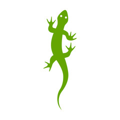 Gecko lizard flat vector icon