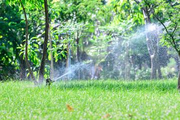 Garden lawn water sprinkler system.