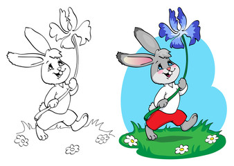 Coloring book or page. Rabbit in red shorts and white shirt with a blue flower.