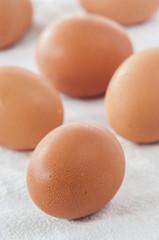 fresh eggs on white background close up