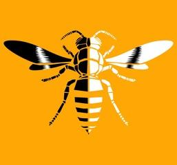Wasp, vector icon