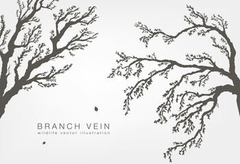 tree branches with leaves and wood