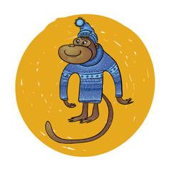 monkey in blue sweater