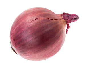 Large red onion on a white background