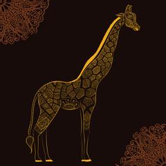 Beautiful adult Giraffe. Hand drawn Illustration of ornamental giraffe.  isolated giraffe on dark background. The head of an ornamental giraffe
