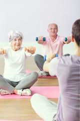 Wellness seniors workout