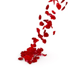 Red rose petals flying on the floor