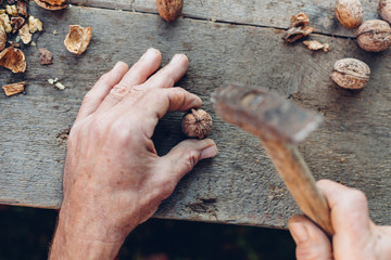Man cracking the nut on an old wooden table