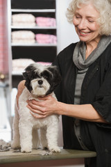 Woman and dog at pet grooming salon