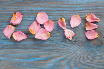 Pink rose petals imaging word love on blue wooden board
