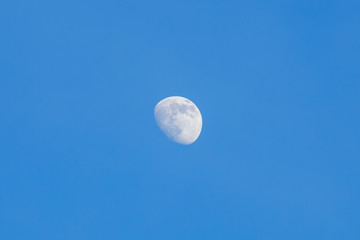 abstract daytime half moon in the sky background