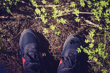 Shoes in the forest. Vintage tone. Top view.