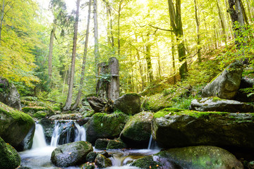 Magic Harz landscape in autum