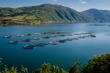Fish farms on the Kizilirmak River