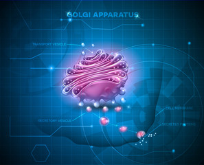 Golgi apparatus abstract technology background