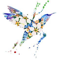 hummingbird multicolored on white background
