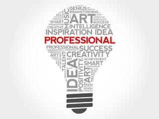 Professional bulb word cloud concept
