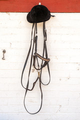 Horse reins and riders helmet hanging in stable