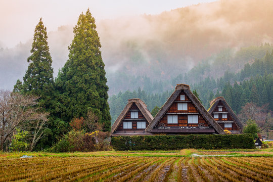 Traditional and Historical Japanese village Shirakawago in autum