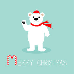 Big white polar bear in santa claus hat and scarf, paw. Candy cane. Merry Christmas Greeting Card. Blue background. Flat design
