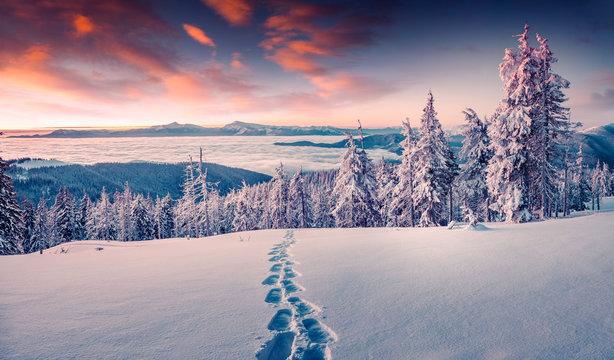 Foggy winter sunrise in the snowy mountain