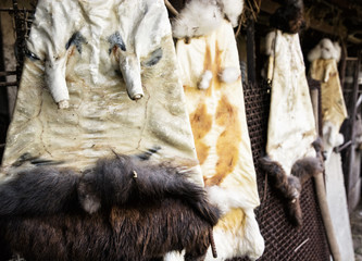 Rabbit furs hanging on the hooks in the farm