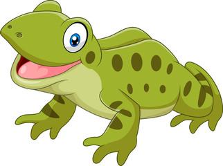 Cartoon funny frog sitting isolated on white background