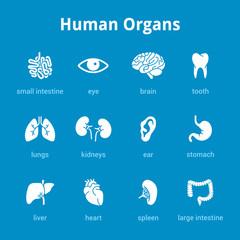 White medical human organs icon set on blue background