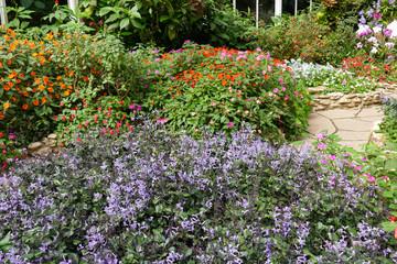 walkway and beautiful flower in the garden