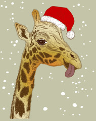 Cute Christmas face of giraffe