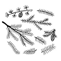 Hand drawn pine branches collection.