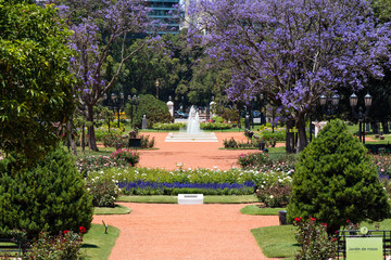Rose Park (Rosedal), Buenos Aires Argentina