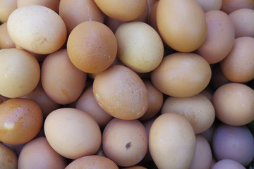 Chicken egg arrange for sale in local market
