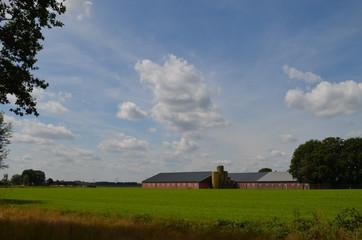 Modern farm building and meadow in Dutch polders, Breda