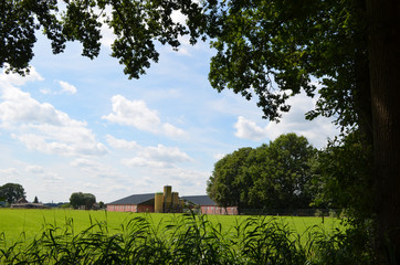 Modern farm building and meadow in Dutch polders, Breda