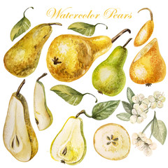 Set with watercolor pears