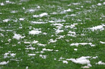 Green grass on a football soccer field