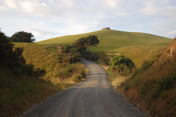 Gravel road at rural area New Zealand