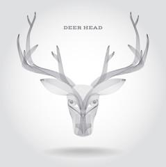 Deer Skull Vector Illustration