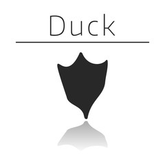 Duck animal track