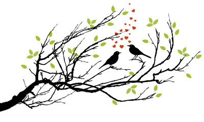 two birds in love with hearts on a branch
