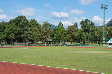 outdoor soccer field with tree and hill