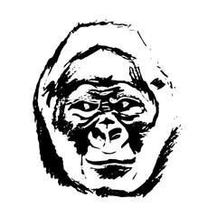 Monkey head (graphics) - gorilla