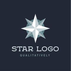 Star Polaris sharp white flat style lights twinkle quality mark logo icon modern