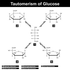 Tautomerism of glucose