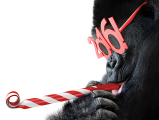 Funny gorilla with noisemaker and 2016 glasses for Year of the Monkey Chinese zodiac