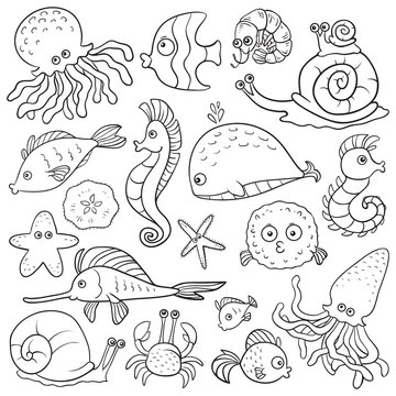 Vector colorless set about fishes
