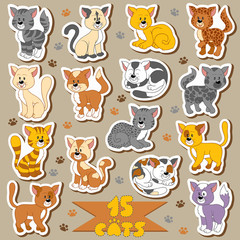 Set of various cute cats, vector stickers