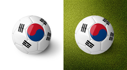 3d realistic soccer ball with the flag of South Korea on it isolated on white background and on green soccer field. See whole set for other countries.